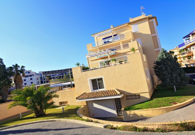 Apartment in Denia - CARLTON 2006 (1D) VYB