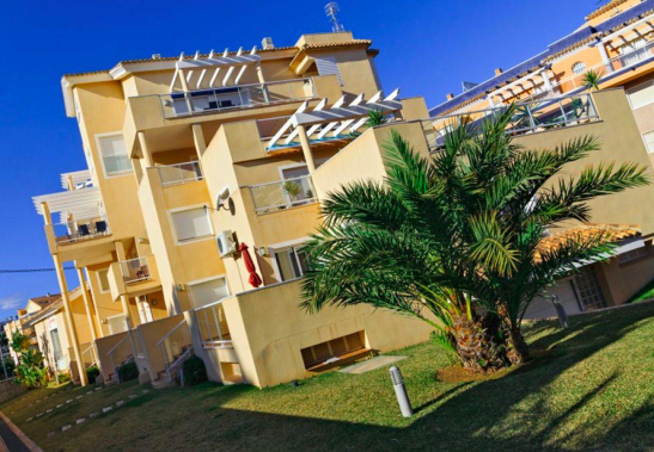 Апартаменты на Дения / Denia - Carlton 2002 (2D) VYB