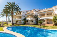 Апартаменты на Дения / Denia -  2d+ wifi + tv sat. LA GIRALDA VYB